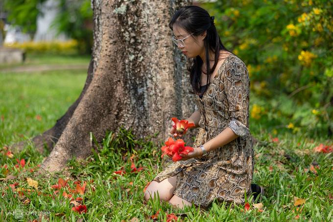 Huế mùa hoa gạo