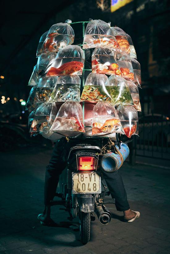 Vẻ đẹp Việt Nam trong cuộc thi ảnh quốc tế